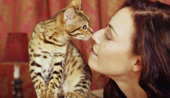 Risultati immagini per donne con gatti