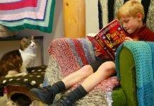 bambini e gatti