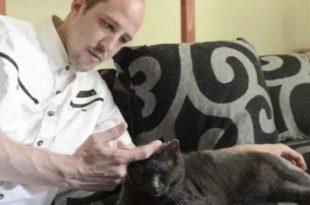 parlare con gatti