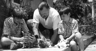 Scrittori famosi e gatti da Hemingway a Bukowski