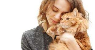 Come misurare il rapporto di amicizia con il nostro gatto