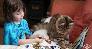 Iris bambina autistica che dipinge col suo gatto al fianco