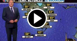 Previsioni meteo interrotte da un gatto