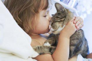 asma e obesità bambini e animali