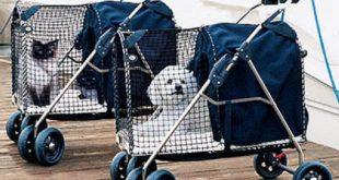 Migliori passeggini per animali, caratteristiche e prezzo