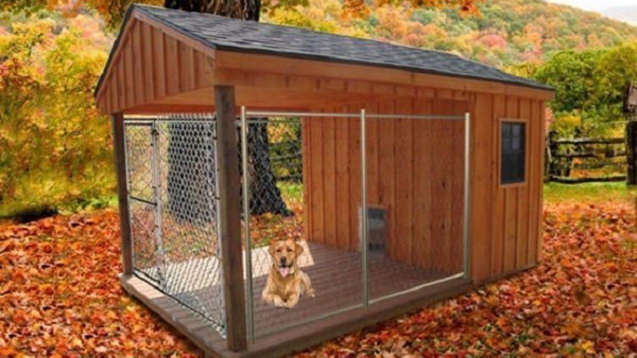 Animali Da Esterno recinto per cani da esterno: caratteristiche, prezzi e
